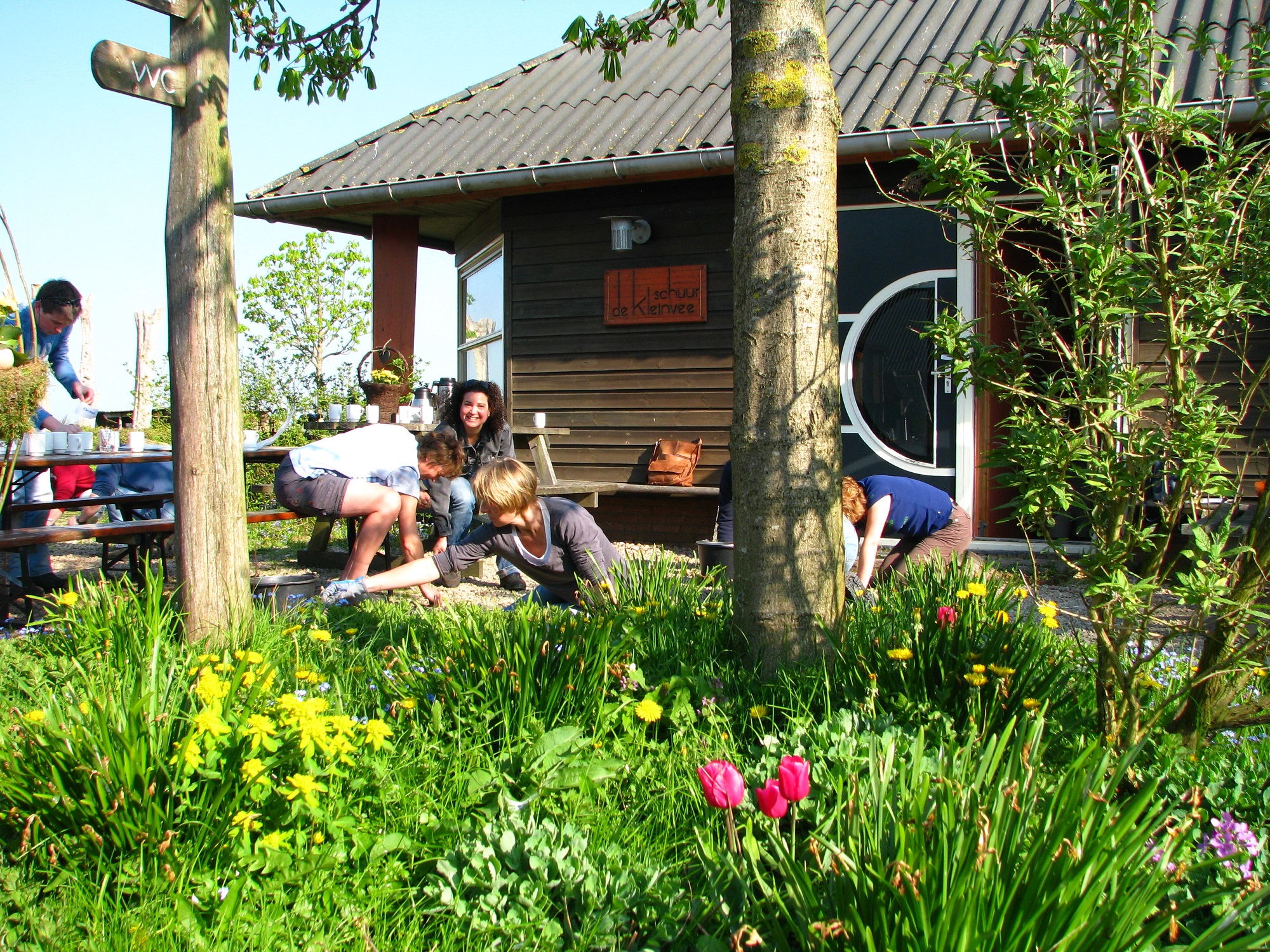 maatschappelijk ondernemen met vrijwilligerswerk in de tuin